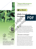 Alfalfa Growth and Development