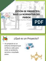 01 Gestion de Proyectos bajo la normativa del PMBOK