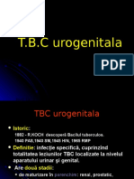 TBC-Urogenital