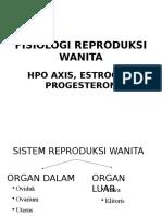 HPO Axis - Estrogen Progesteron