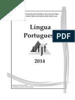 Apostila Português 2014 Patrícia