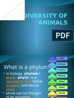 biodiversity of animals ppt