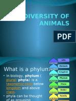 biodiversity of animals ppt