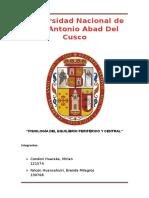 FiSIología Del Equilibrio Periférico y Central