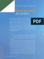 2015 - Diferenciacion Sexual Del Cerebro