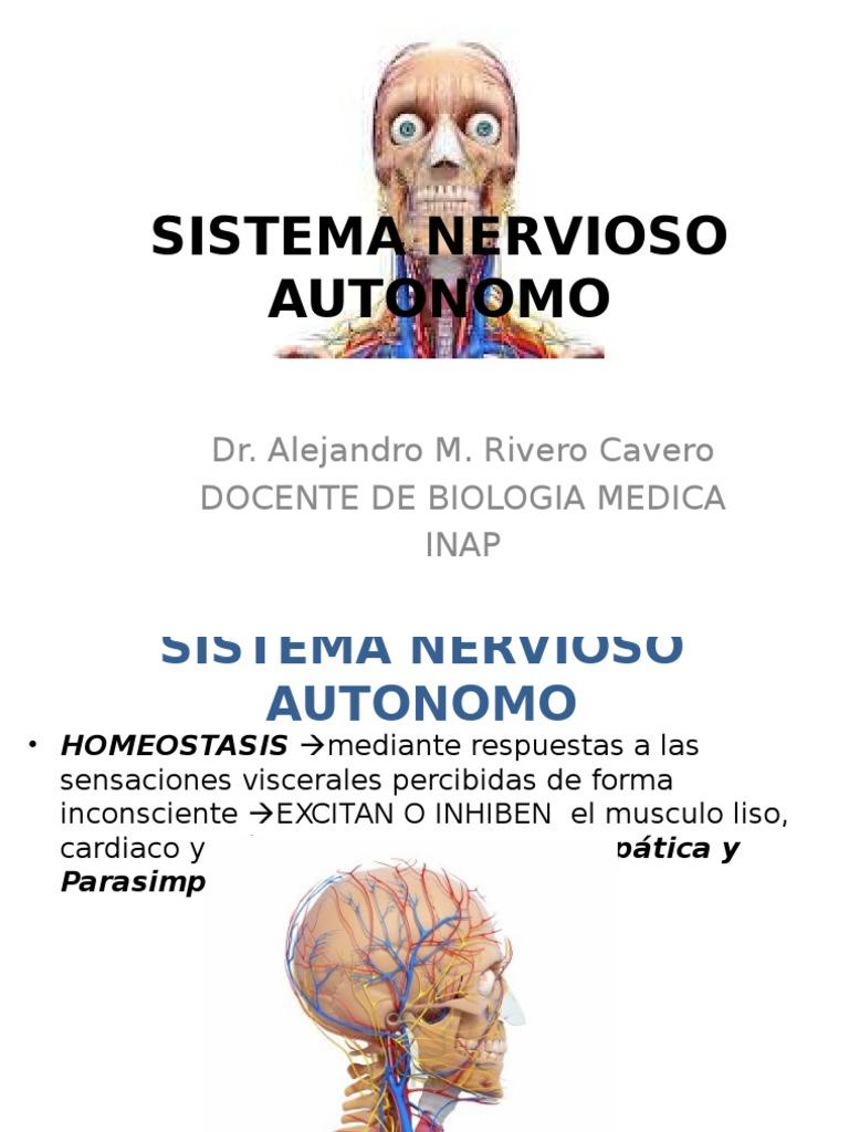 Tema 11 Cap. 15 Sistema Nervioso Autonomo
