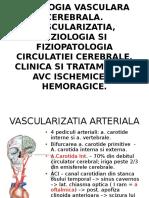 Patologia-Vasculara-Cerebrala