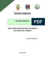 Forestal Final 2007