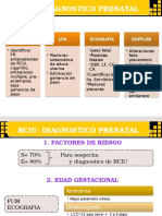 Restriccion de Crecimiento Intrauterino Cris