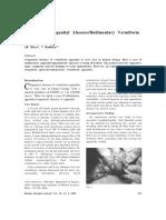 Rudmentry Appendix