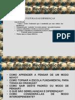 Ensaios Pedagógicos Texto 02