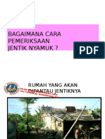 ppt Jumantik