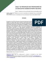 """O CONTEXTO """"DANÇA"""" NA PERCEPÇÃO DOS PROFESSORES DE EDUCAÇÃO FÍSICA ESCOLAR DA CIDADE DE PORTO VELHO/RO."""