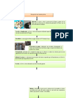 Preinforme Elaboracion de Bocadillo