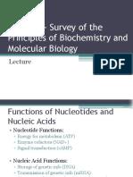 Lecture 1 - Nucleic Acids - Su 15