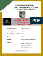 SUBCUENCA DEL RIO SANTA - WORD.pdf