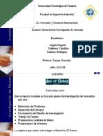 Investigacion de Mercado Fase 1.ppt