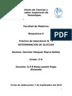 Practica Bioquimica