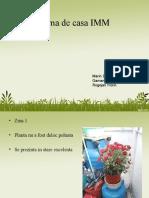 Tema de Casa Imm Floare