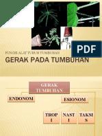 06. GERAK PADA TUMBUHAN