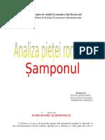 Cercetare Sampon