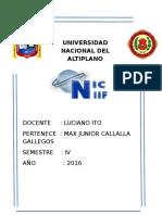 Universidtad Nacional Del Altiplano