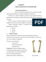 2 Anatomia Aparatului Locomotor