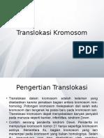 Translokasi Kromosom