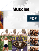 Muscles1[1]