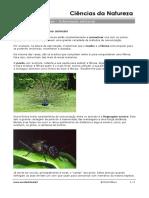 A Comunicação Entre Os Animais_Informação Adicional