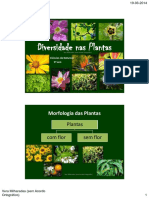 Diversidade_nas_Plantas