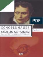 Arthur Schopenhauer - Güzelin Metafiziği