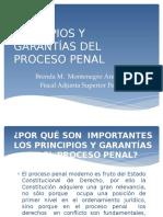 Principios y Garantías Del Proceso Penal Dra. Brenda Montenegro