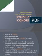 Studii de Cohorta