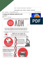 17 Cosas Que Debieras Saber Del ADN - Investigación y Desarrollo