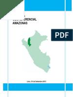 Amazonas, informe georeferencial