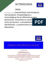 familiamicrococaceae-091226052506-phpapp01