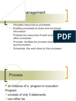 -Process Management Ppt