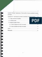 MANDATUL EUROPEAN DE ARESTARE.PDF