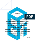 C1 TEMA 6