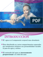 Hidratacion v PSin 2013