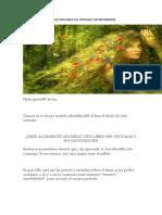 Eres Altamente Sensible PDF