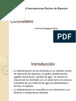 Ciclohexeno PDF