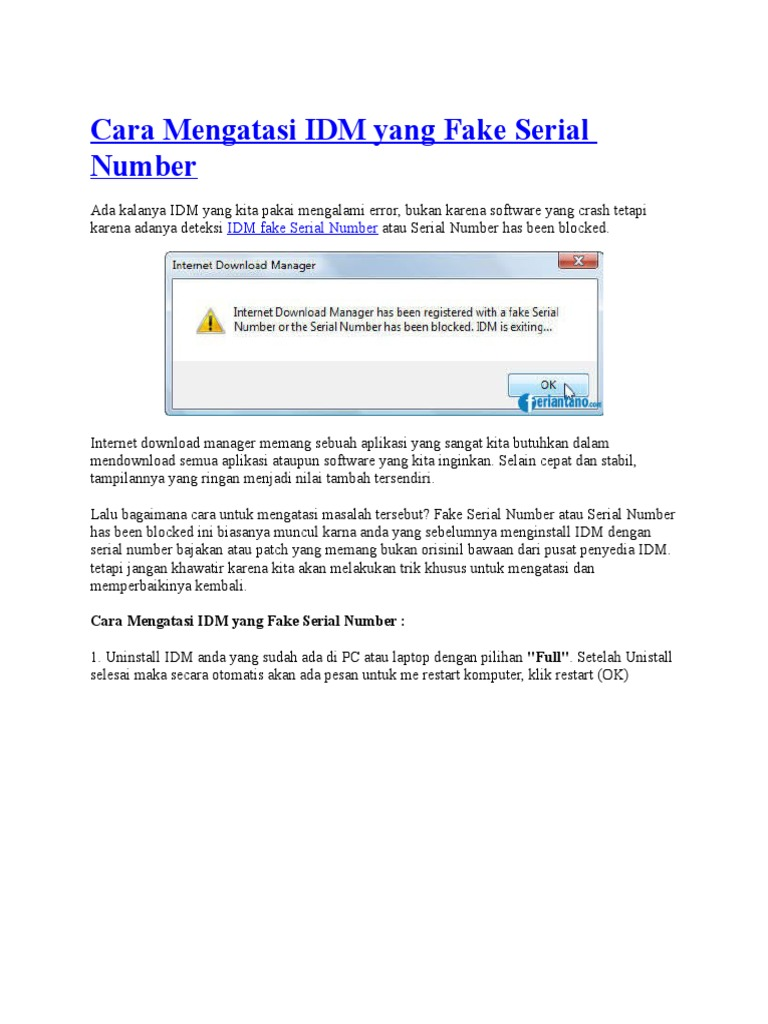 internet download manager has been registered with a fake serial number la gi
