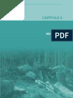 Deforestacion_parte3 Año 2000 Minam