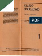 Anarco-Sindicalismo Historia y perspectivas de Jose Peirats