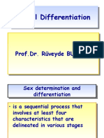 SEX Differentiation by.R.Bundak