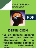 Sindrome Cerebral Organico