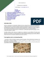 contaminación -ambiental