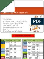 esquemadevacunacinexpo-120920185617-phpapp01